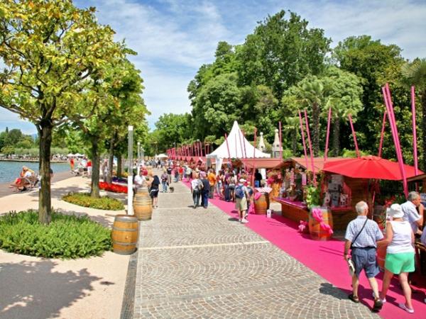 Festa del Novello - Bardolino