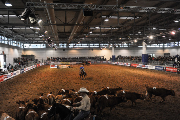 Fieracavalli Verona - Pferdemesse in Verona